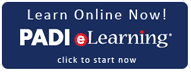 Purchase PADI elearning course. scuba diving new zealand sea adventures dive in wellington